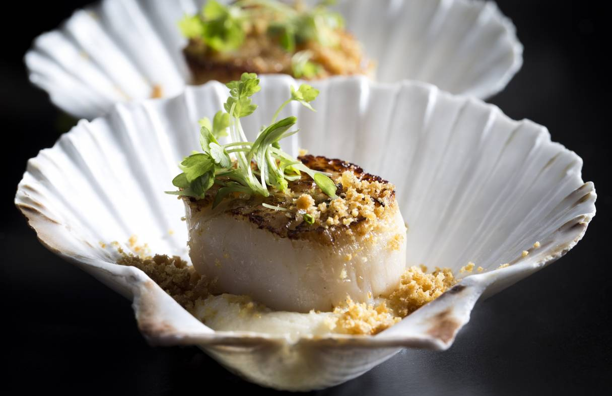 BSK Seared scallops celeric puree chicken skin crumble celery cress apple 101016 2