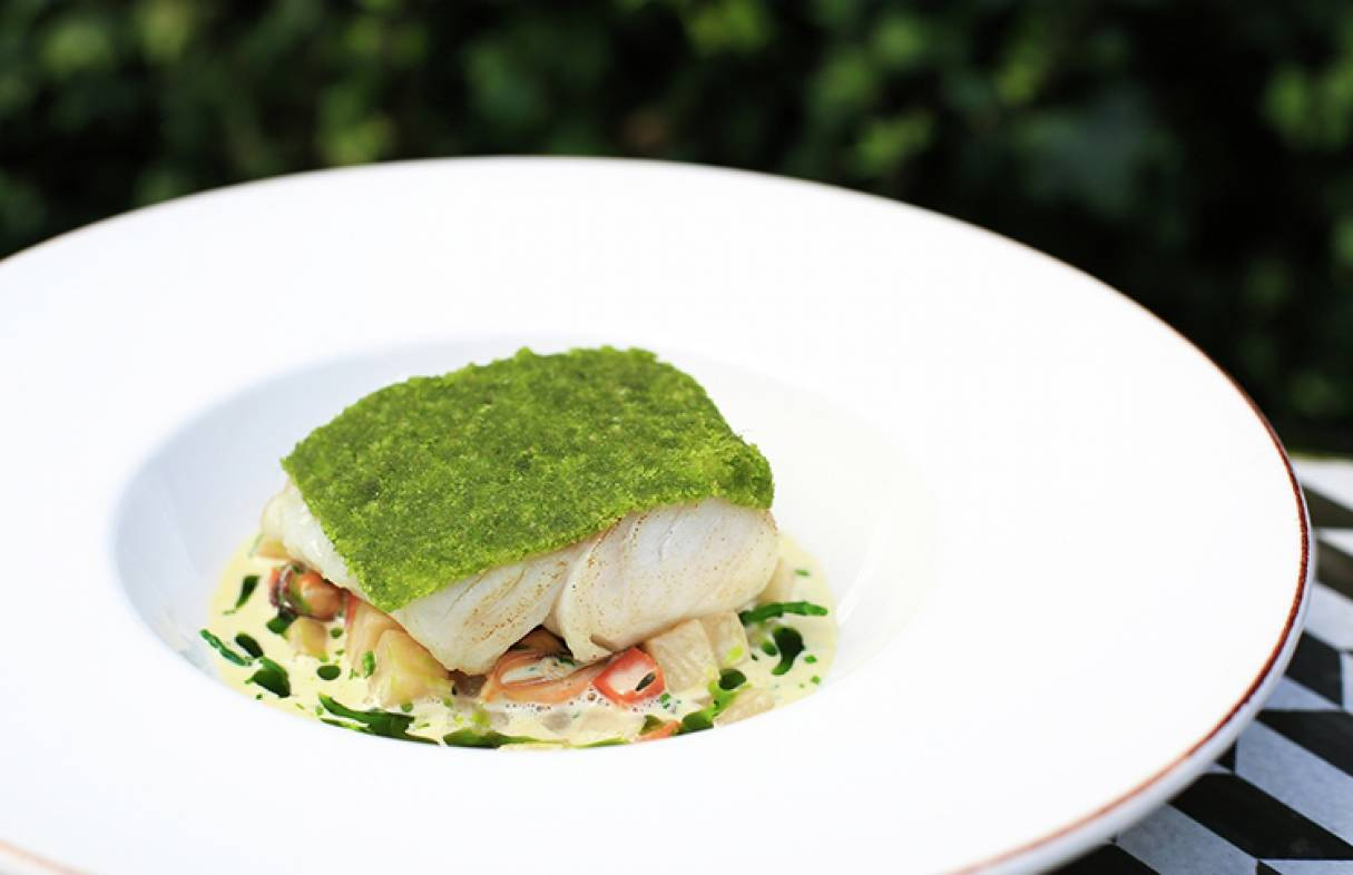 LH Herb Crusted Cod 800px