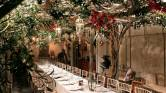 Olive Grove Wedding Set up