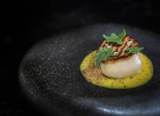 11 Orkney Scallop