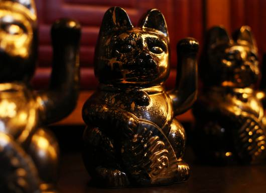 Lucky cat Lucky cats 1500px
