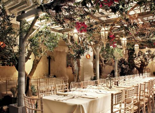 Olive Grove Valentines Day 2019