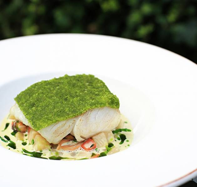 LH Herb Crusted Cod 600px