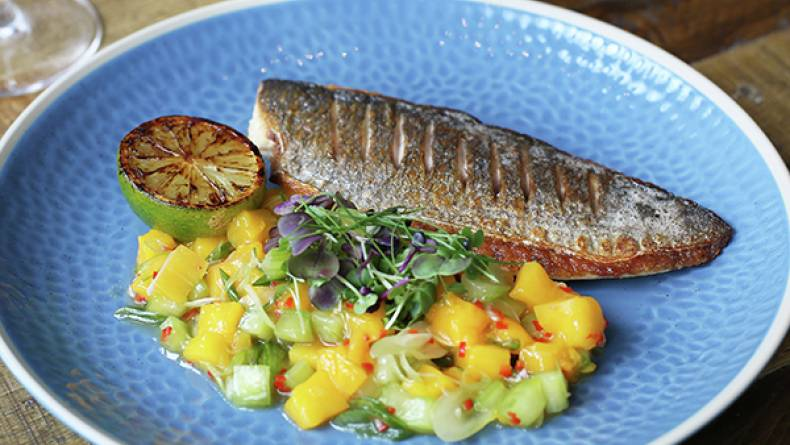 MG Roasted Seabream Mango and Cucumber 600px